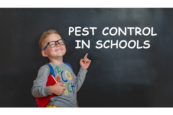 Big sq pest controlin schools
