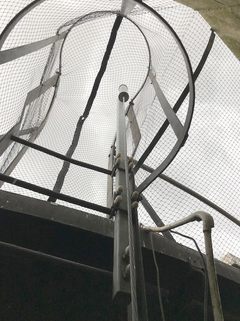 Water Tower Bird Proof Project